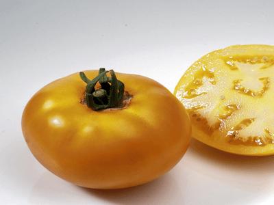 Tomate Lemon Boy F1