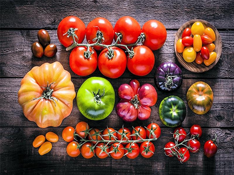 Nombreuse sorte de tomate