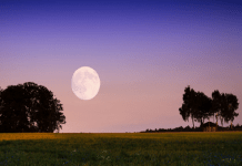Calendrier lunaire jardinage octobre 2021